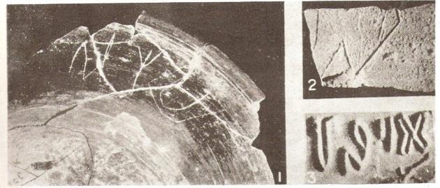 படம் 3. சாணூர்ப் பானை ஓட்டில் மகரவிடங்கர் எழுத்து