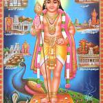 முருகா உன்னடி பணிந்தேனே | விஜயலட்சுமி